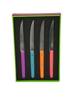 Coffret de 4 couteaux de table, collection Néo, 4 bois teintés