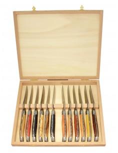 Coffret de 12 couteaux de table Laguiole prestige, bois divers, 2 mitres inox, 23 cm